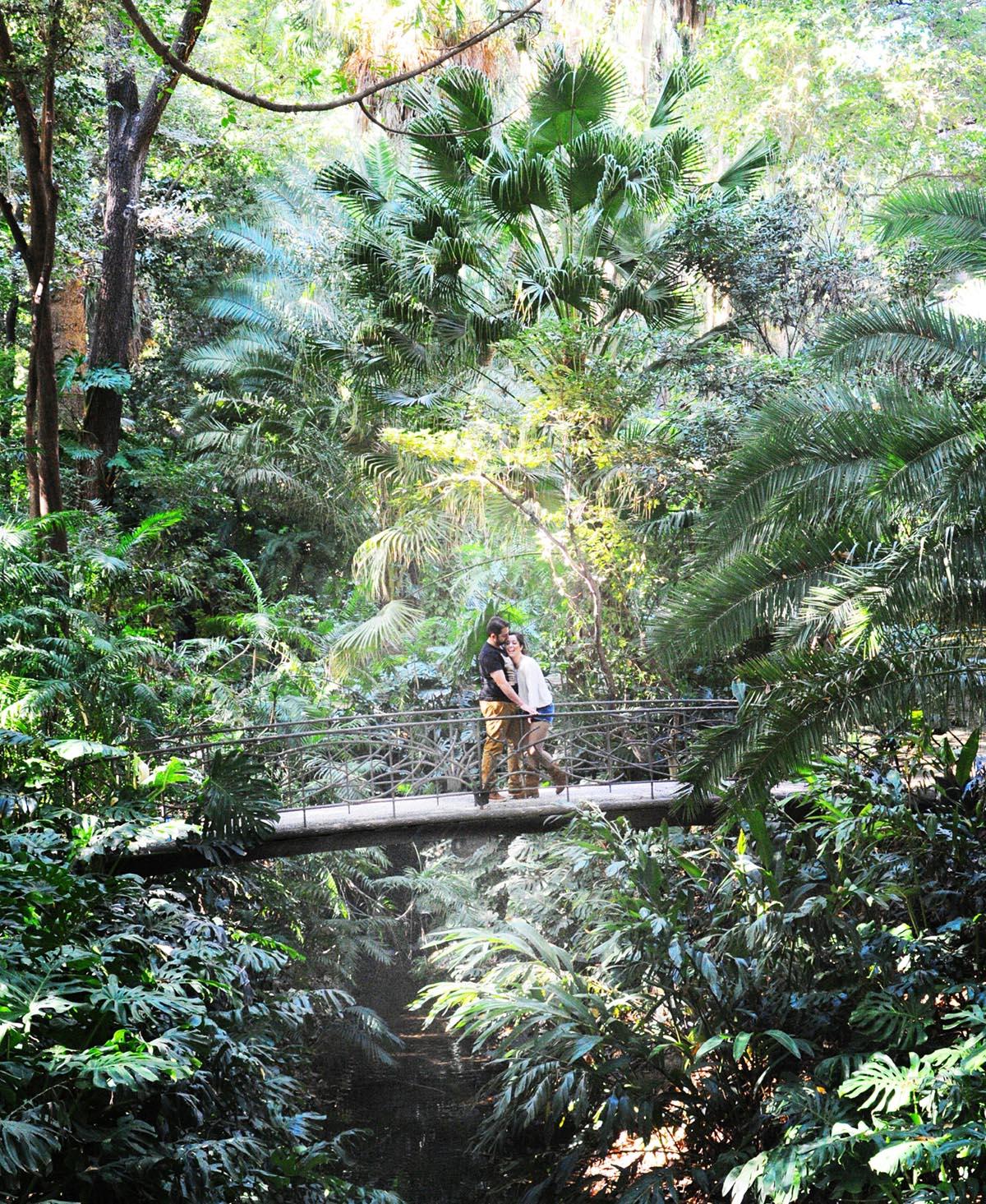 prebodas jardin botanico