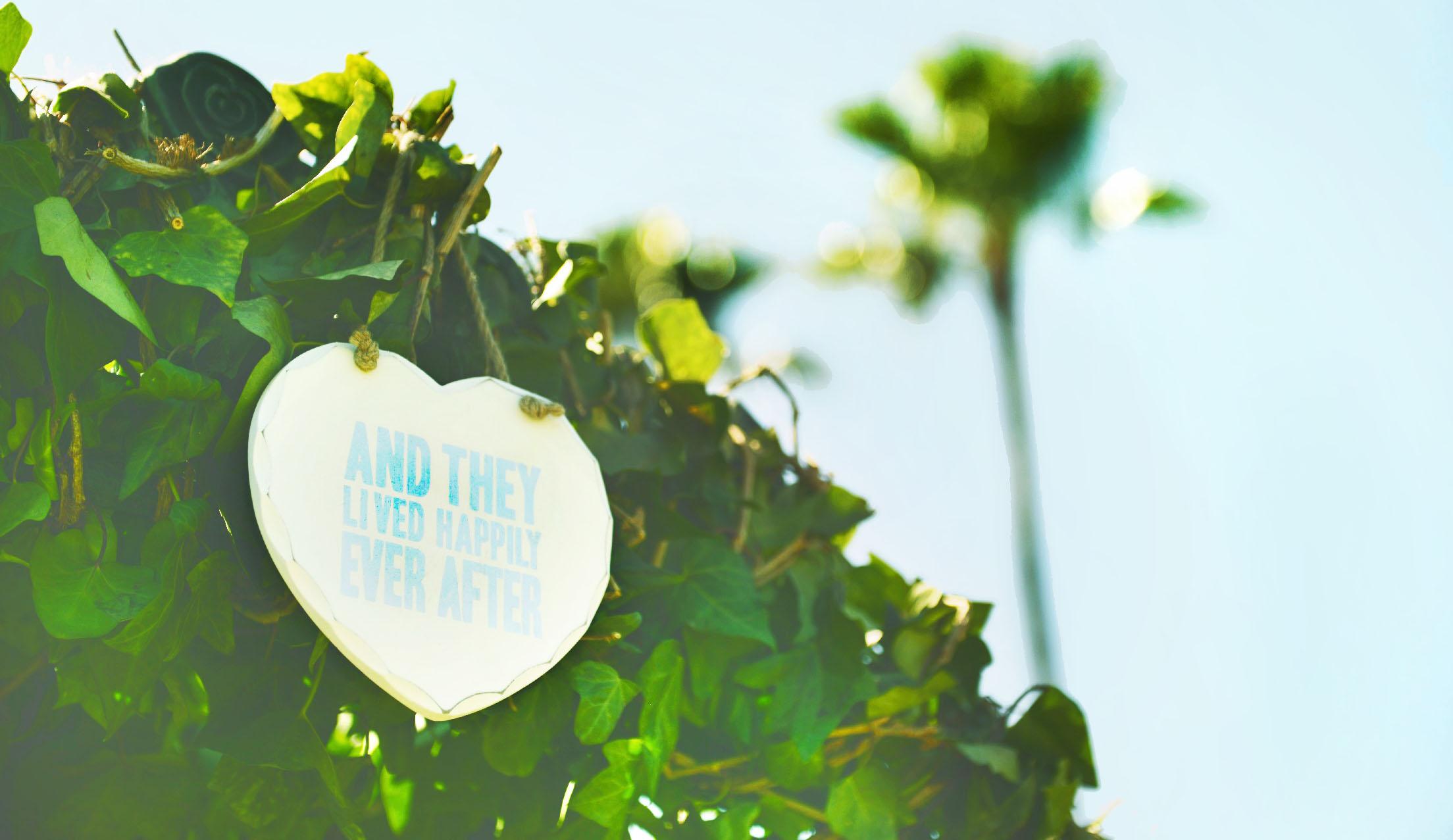 Fotos bodas Torrequebrada – Torremolinos