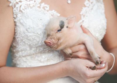 fotos-de-boda-fain-viejo